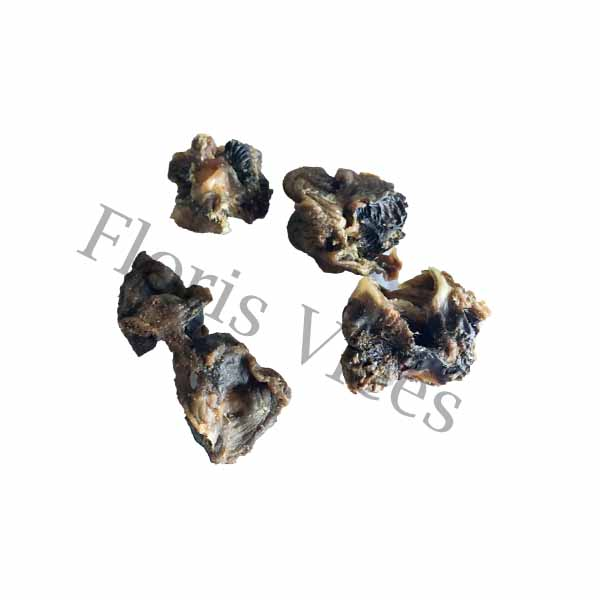 Kippenmaag - Floris Vlees